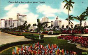 Florida Miami Bayfront Park Flower Beds