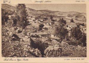 JUDAICA Upper Galilee, Rosh Pina, Farm, Horses, Palestine, Israel, Pre-1948