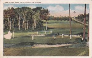 One Of The Many Golf Courses In Florida
