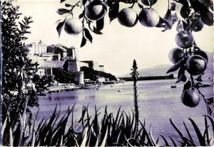 Postal 16409: CALVI - Le port et la Citadelle La Corse