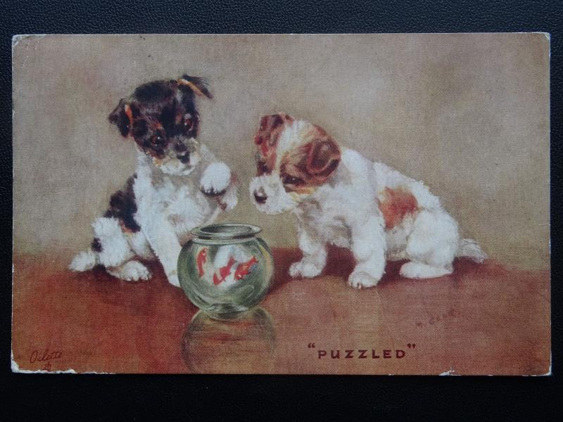 Comic Dog TWO PUPPIES AND A FISH BOWL - PUZZLED c1930's Postcard by Tuck 3598