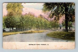 Forest OH, Gormley Park, Vintage Ohio c1908 Postcard