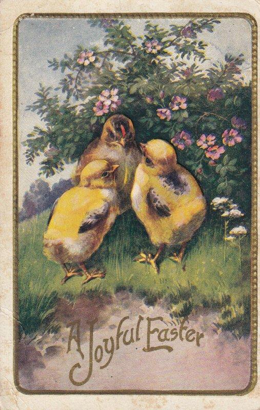 EASTER, PU-1911; A Joyful Easter, Chicks
