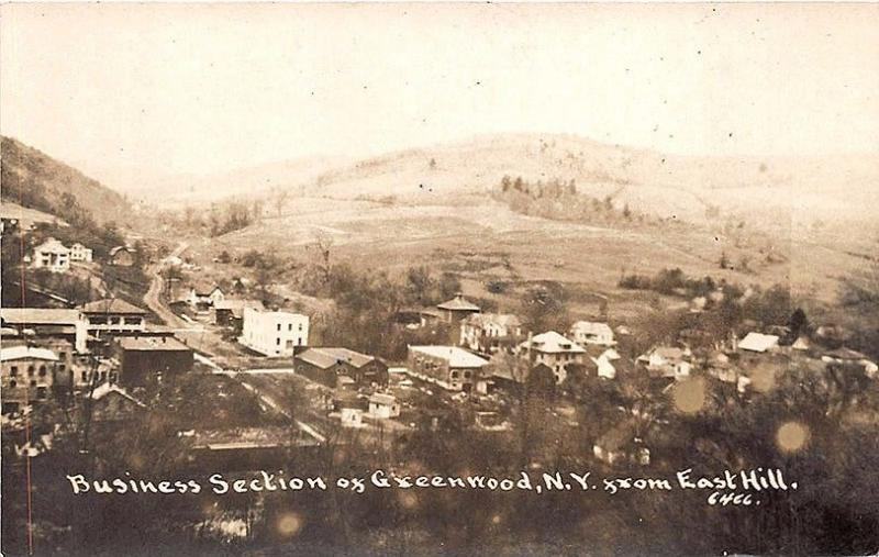 Greenwood NY Business District From East Hill RPPC Postcard