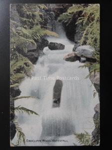 Yorkshire SHEFFIELD Endcliffe Wood Waterfall c1905 Postcard by The Park Series