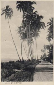 Singapore Suburb Trees WW2 Real Photo Postcard