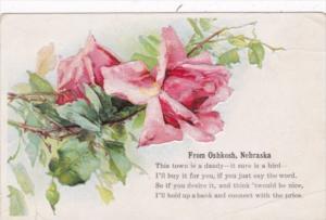 Nebraska Beautiful Roses From Oshkosh 1909