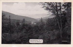 From The Hillside Phoenicia New York Dexter Press