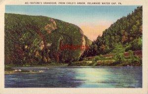 nature's grandeur FROM CHILD'S ARBOR DELAWARE WATER GAP, PA 1938