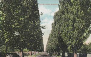 Scenic view, Poplar Avenue, Hamilton,Canada,00-10s