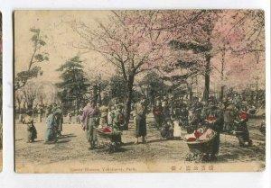 3061080 JAPAN Cherry Blossom Yokohama park Vintage PC
