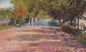 Kansas Grant Avenue Between Junction City & Fort Riley During 1908 Flood