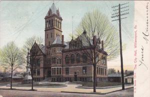 WILLIAMSPORT, Pennsylvania, PU-1906; The City Hall