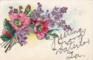 Flowers, Greetings From Waterloo, Iowa, 1900-1910s (Glitter Detail)