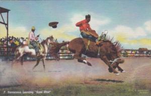 Horses F Stevenson Leaving Sure Shot Curteich