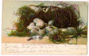Rhode Island, Souvenir Clams