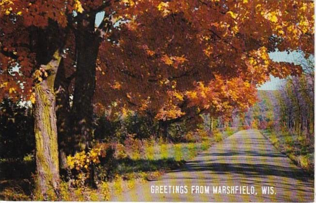 Wisconsin Greetings From Marshfield