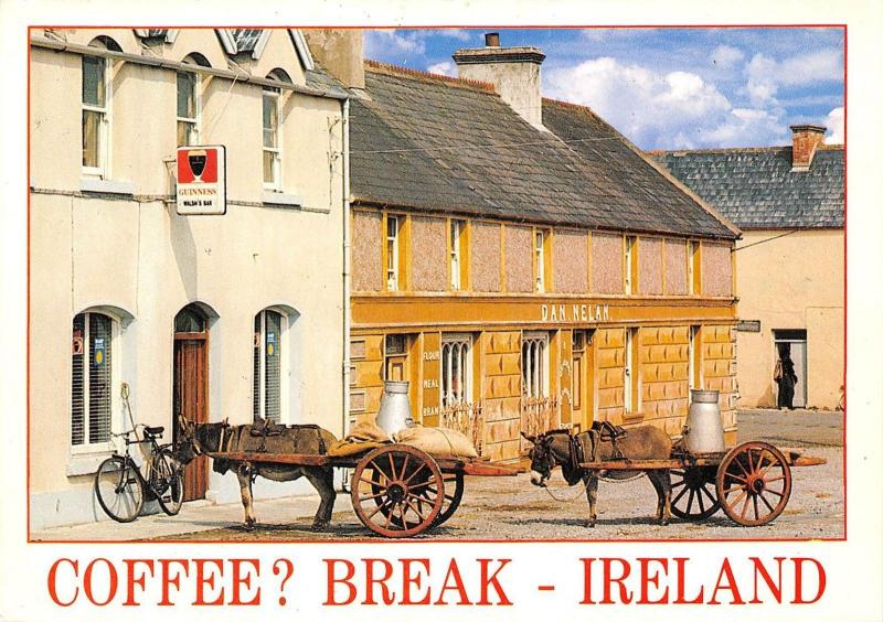 Ireland Coffee Break Donkeys