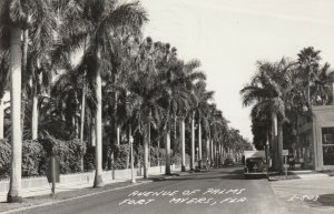 RP; FT MYERS , Florida , 1948 ; Avenue of Palms