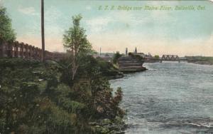 BELLEVILLE, Ontario , 1900-10s ; G.T.R. Bridge over Moira River