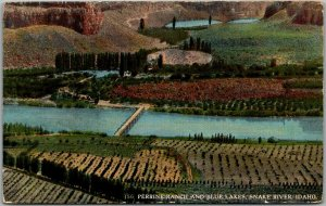 1910s Idaho Postcard PERRINE RANCH AND BLUE LAKES, Snake River Andrews Unused