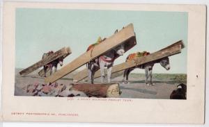 Rocky Mt Freight Train - Donkeys