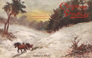 Harry Payne. Clothed i Whit Tuck Oilette Glorious Winter Ser. PC # 9569