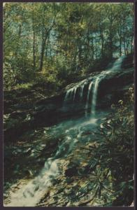 The Cascades,Blue Ridge Parkway,NC Postcard BIN