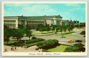 Chicago Illinois~Natural History Museum~Grant Park~Postcard