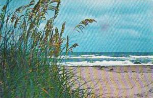 North Carolina Outer Bank 1970