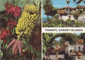 Postal 60770: Varios motivos (Tenerife)
