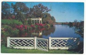 Orton Plantation Gardens, Wilmington, North Carolina, PU-1963