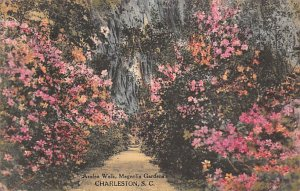 Azalea walk Magnolia Gardens Charleston, SC