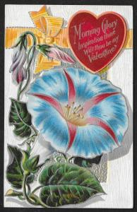 Morning Glory...My Valentine Flowers Unused c1910s