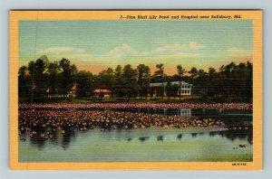 Salisbury MD-Maryland, Pine Bluff Lily Pond & Hospital, Linen Postcard