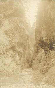 United States scenic photo postcard Oneonxa Gorge Columbia River Highway Oregon
