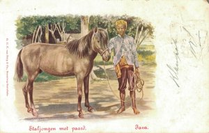 Indonesia - Staljongen met Paard Java - Dutch East Indies 03.08