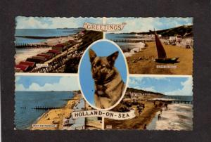 UK Greetings From Holland On Sea England British Dog Essex Great Postcard