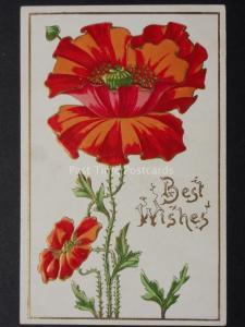 Art Nouveau Embossed Poppies Postcard c1908