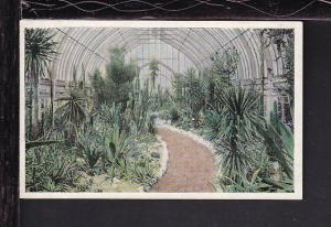 Missouri Botanical Gardens,St Louis,MO Postcard
