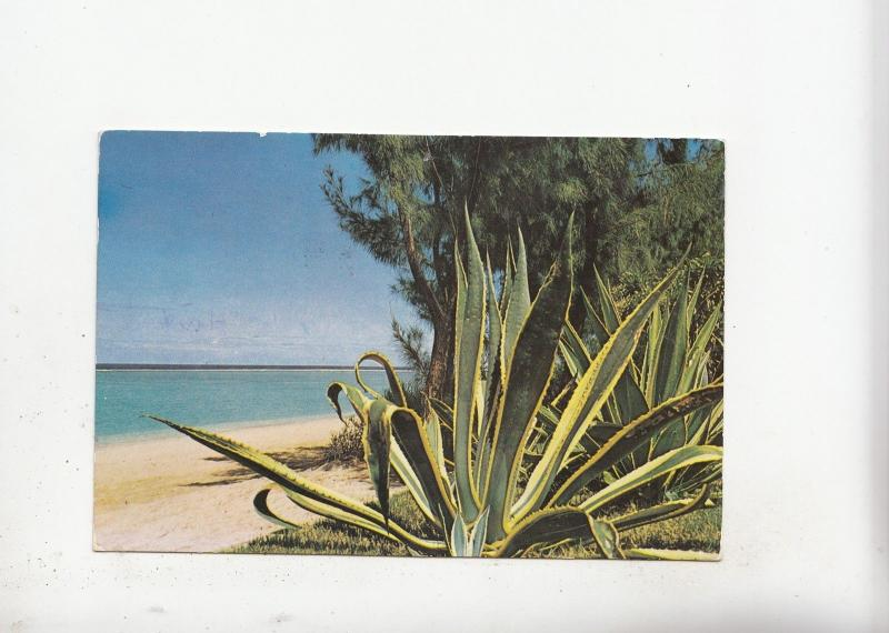 BF17979 albion beach pearl of th l ile maurice mauritius types  front/back image