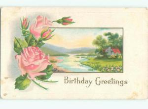 Divided-Back BEAUTIFUL FLOWERS SCENE Great Postcard AA2817