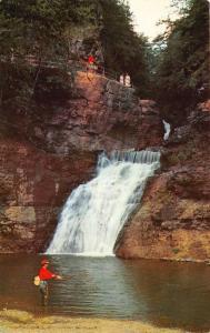 Pennsylvania~Buck Hill Falls~Man Fishing~Visitor's Note on Back~1965 Postcard