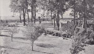 Rockome near Arcola,  Illinois,   40-60s