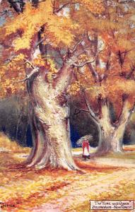 New Forest, Bolderwood (Hampshire) Autumn, The King and Queen Jotter 1907
