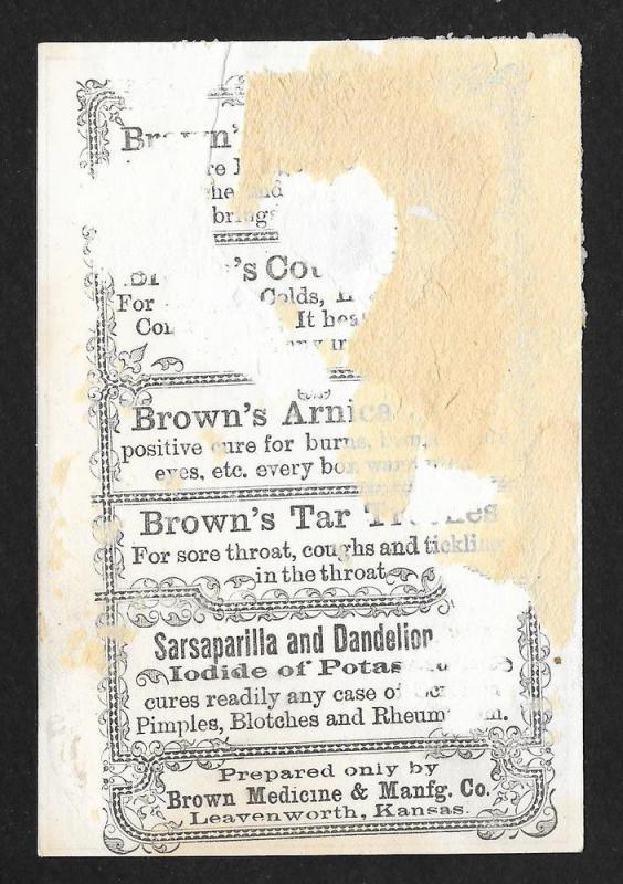 VICTORIAN TRADE CARD Brown Medicine Cats w/Sheet Music