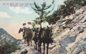 MT. LOWE, California, 1900-1910's; On The Trail
