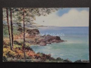 Channel Islands GUERNSEY Marble Bay from Jerbourg Pine Forest c1963 Brian Gerald