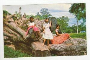 Paraguay, Motiva Tipico, 1950s