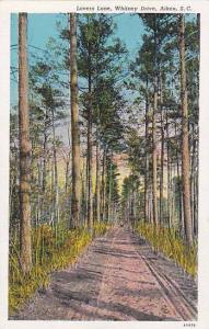 Lovers Lane, Whitney Drive, Aiken, South Carolina, 00-10s